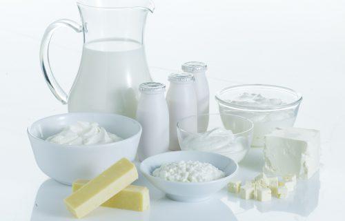 Fermenţi folosiţi în industria laptelui